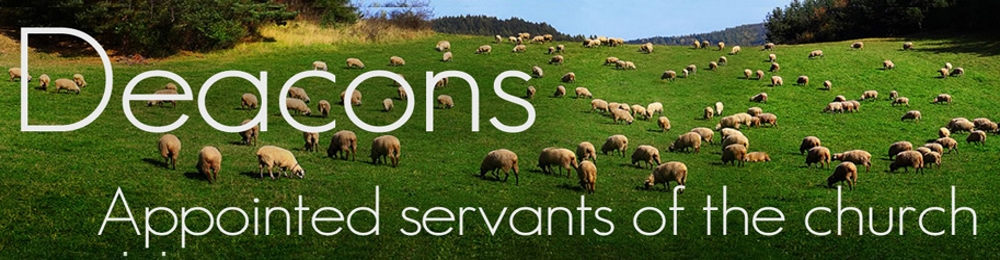 Appointed servants of the church